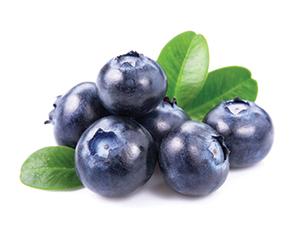 Liquid Blueberry Flavour