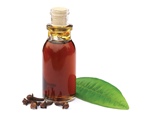 Liquid Clove Oil Flavour