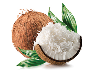 Crunchy Coconut Flavour & Essence for Bakery