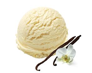 Vanilla Flavour & Essence for dairy