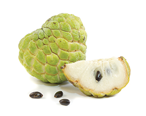 Liquid Custard Apple Flavour
