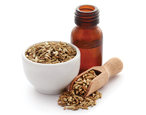 Liquid Fennel Seed Oil Flavour