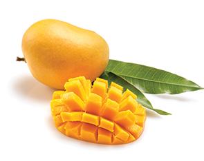 Liquid Mango Hapoos Flavour
